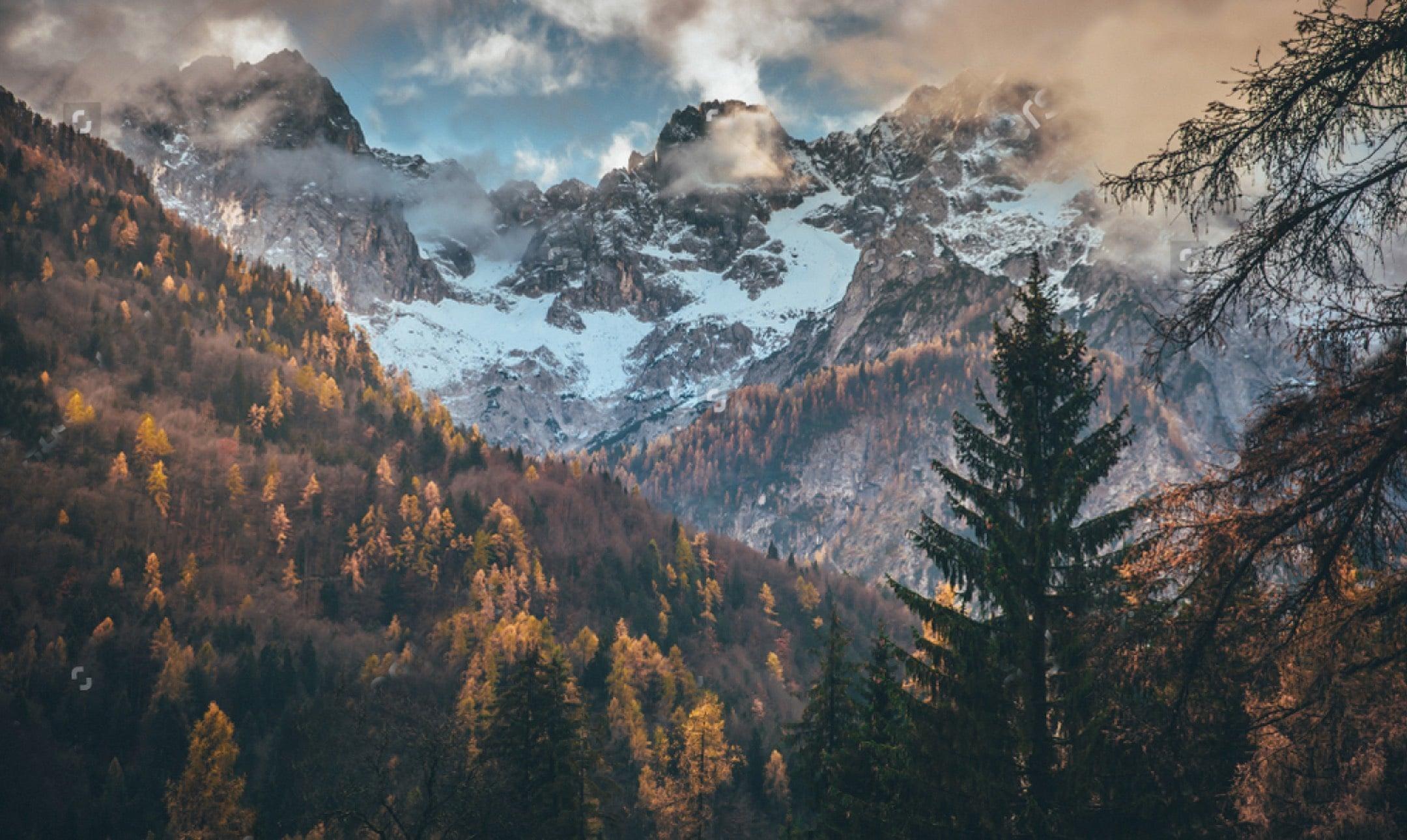 alpe-magna-salse-sughi-trentino-dolomiti